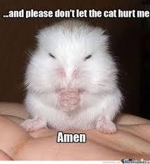 Praying Memes - small prayer by kokoz meme center