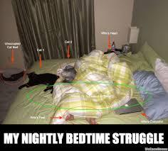Bedtime Meme - my nightly bedtime struggle memes pinterest bedtime funny