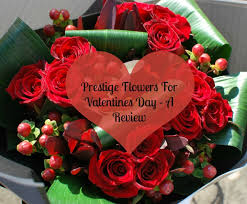 valentines day teddy bears prestige flowers for valentines day a review teddy bears and