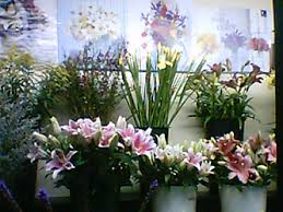 florist nyc about us and business hours america s florist new york ny 10018