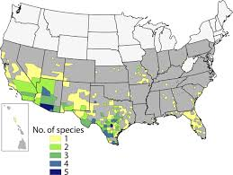 Continental United States Map by Trypanosoma Cruzi And Chagas U0027 Disease In The United States