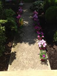 easy step by step guide to planting flowers gardening and