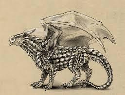 rawr draw anatomically correct dragon