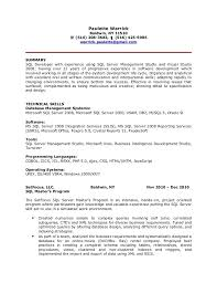 T Sql Resume Sql Server Resume Resume Ideas