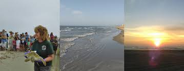 Beach Houses For Rent In Surfside Tx by Surfside Courtyard Condos The Best Kept Secret On North Padre