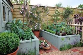 home vegetable growing course study vegetable gardening
