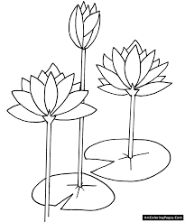 flower page printable coloring sheets throughout flower