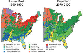 us climate map climate impacts on forests climate change impacts us epa