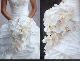wedding bouquets cheap white orchid wedding flowers the wedding specialiststhe wedding