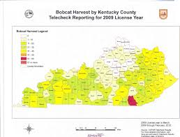 Map Of Kentucky State by Life Is A Journey Bobcats In Kentucky