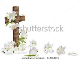 flower cross stock images royalty free images vectors