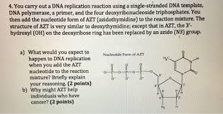 you carry out a dna replication reaction using a s chegg com