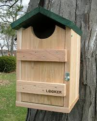 flicker bird house plans traditionz us traditionz us
