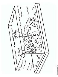 aquarium coloring pages 28 images aquarium coloring pages