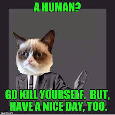 Go Kill Yourself Meme - grumpy cat kill yourself imgflip