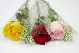 Baby S Breath Wholesale Wholesale Single Stem Assorted Rose Bouquets With Baby U0027s Breath