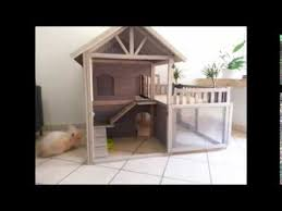 Indoor Hutches Cute Indoor Bunny Hutch House Youtube