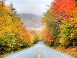 best scenic road trips in usa best fall road trips usa rv rentals blog