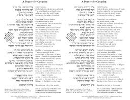 prayers for sukkot for shabbat noach a prayer for creation the shalom center