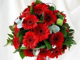 Order Flowers Online 23 Best Order Flowers Online Images On Pinterest Fresh Flowers