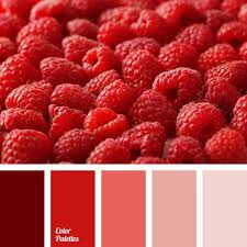 best 25 red color combinations ideas on pinterest color