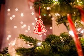 free stock photo of night theme christmas