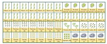 download free vegetable garden planner solidaria garden