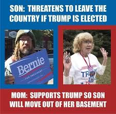 Voting Meme - hilarious meme reveals why this mom is voting for trump