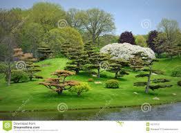 Botanic Garden Glencoe Japanese Garden Stock Photo Image Of Green Gardening 45219122