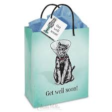 get well soon gift get well soon gift bag archie mcphee co