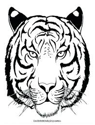 coloring page tigers tiger coloring page printable baby tiger coloring pages online page