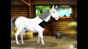 horses horseland