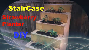 Diy Strawberry Planter by Diy Strawberry Project Stair Case Strawberry Planter Youtube