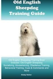 belgian sheepdog training guide english springer spaniel training dog training with the no brainer