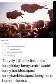 Hilarious Memes Tumblr - sixpennies gelfling icelandic sheep where are they going to valhalla