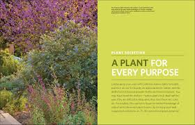 native southern california plants the california native landscape the homeowner u0027s design guide to