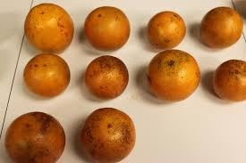 Orange Color by Food Grade Colorants Identified For Citrus