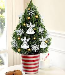 small christmas tree christmas tree in pot the festive decor and beautiful addition to