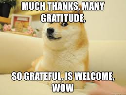 Gratitude Meme - much thanks many gratitude so grateful is welcome wow so