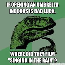 Rainy Day Meme - to ponder on a rainy day