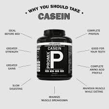Casein Protein Before Bed Casein Protein Powder Slow Sustained Release Promix Nutrition