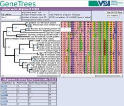 an example of the central tree plus alignment visualization from