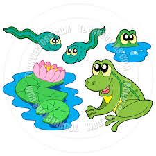 cartoon frog collection by clairev toon vectors eps 42637