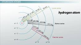 the bohr model and atomic spectra video u0026 lesson transcript