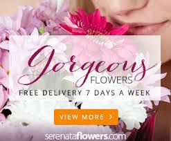 cheap flowers free delivery next flowers by post