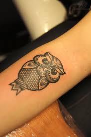 tiny owl on arm