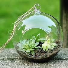 glass terrarium kit online glass terrarium kit for sale