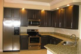 ideas for kitchen lighting decor paint colors for kitchens with dark cabinets extraordinary