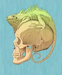 printable lizard mask template 15 images of iguana mask template lastplant com