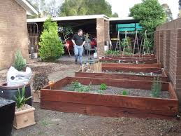 home veggie garden ideas community archives the greening of gavin
